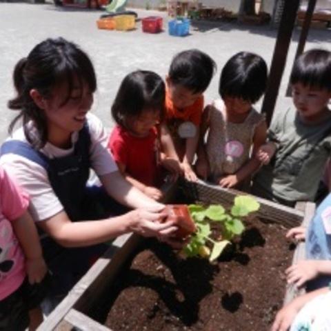 いちごさん(年少)はかぼちゃを植えるよサムネイル